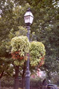 [color photograph of Annapolis street light]